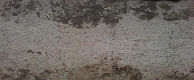 Plastic settlement cracks